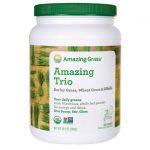 Amazing Grass The Trio – Barley Grass, Wheat & Alfalfa 28.2 oz Powder