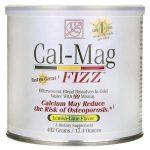 Baywood International Cal-Mag Fizz – Lemon-Lime Flavor 17.4 oz Powder Bone Health