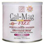 Baywood International Cal-Mag Fizz – Mixed Berry Flavor 17.4 oz Powder Bone Health