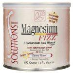 Baywood International Magnesium Fizz – Cherry Flavor 17.4 oz Powder Health Minerals