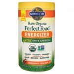 Garden of Life Raw Organic Perfect Food Green Superfood – Energizer 9.8 oz Powder Energy