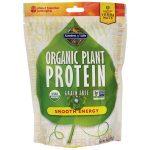 Garden of Life Organic Plant Protein – Smooth Energy 9 oz Powder