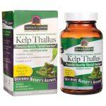 Nature's Answer Kelp Thallus 100 Veg Caps Energy