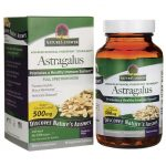 Nature's Answer Astragalus 500 mg 90 Veg Caps Immune Support
