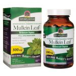 Nature's Answer Mullein Leaf 500 mg 90 Veg Caps Herbs and Supplements