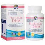 Nordic Naturals Prenatal Dha 500 mg 90 Soft Gels Essential Fatty Acids
