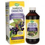Nature's Way Sambucus Immune Syrup 8 fl oz Liquid Immune Support