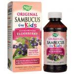 Nature's Way Sambucus for Kids 4 fl oz Liquid Immune Support Children's Health