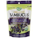 Nature's Way Organic Sambucus Elderberry, Vitamin C, Zinc Lozenges Berry 24 Lozenges Immune Support