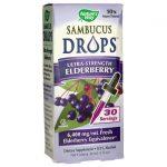 Nature's Way Sambucus Drops – Ultra-Strength Elderberry 1 fl oz Liquid Immune Support