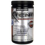 Scivation Xtend Intra-Workout Catalyst – Watermelon Madness 13.5 oz Powder Energy