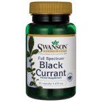 Swanson Premium Full Spectrum Black Currant 400 mg 60 Caps Essential Fatty Acids