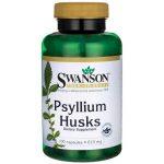 Swanson Premium Psyllium Husks 610 mg 100 Caps Digestive Health and Fiber